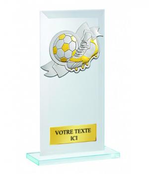 Trophée en verre personnalisé 3617